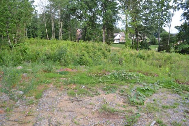 Sierra Lane, Sevierville, TN 37862 (#1005643) :: SMOKY's Real Estate LLC