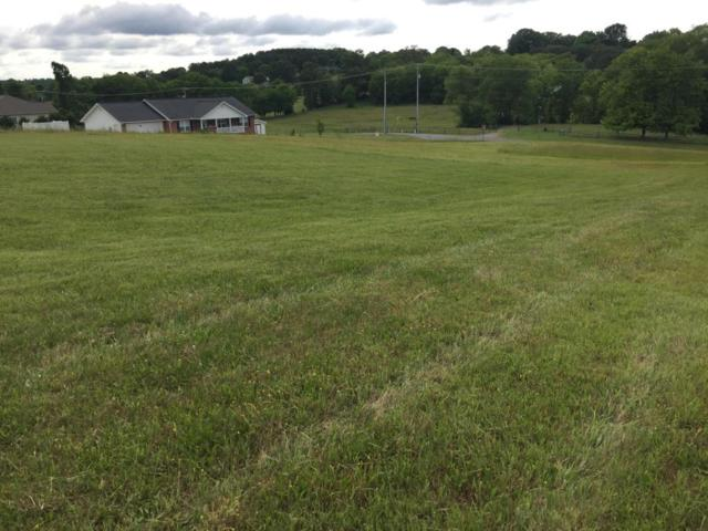 Lot 3 Rosewood Drive, Sevierville, TN 37876 (#1005650) :: Billy Houston Group