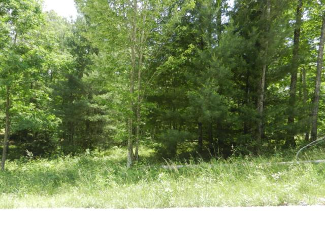 Lot 15 Toomey Falls Rd, Oneida, TN 37841 (#1005872) :: The Creel Group | Keller Williams Realty