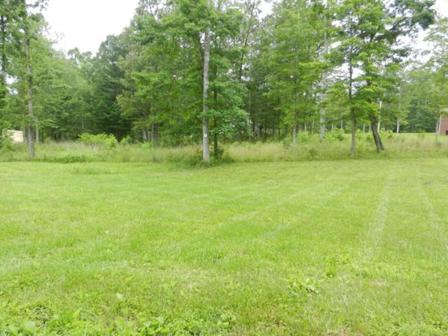 Lot 21 Toomey Rd, Oneida, TN 37841 (#1005878) :: Shannon Foster Boline Group