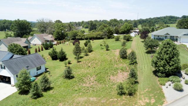 Cold Creek Rd, Madisonville, TN 37354 (#1005899) :: Shannon Foster Boline Group