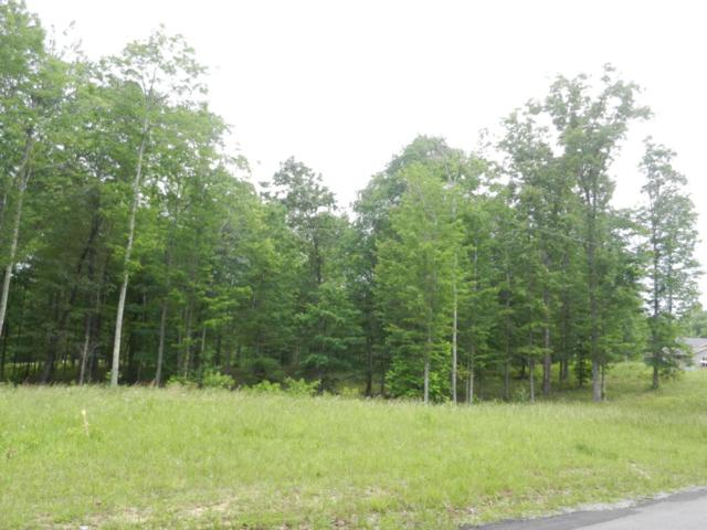 Lot 26 Toomey Rd, Oneida, TN 37841 (#1006086) :: Shannon Foster Boline Group