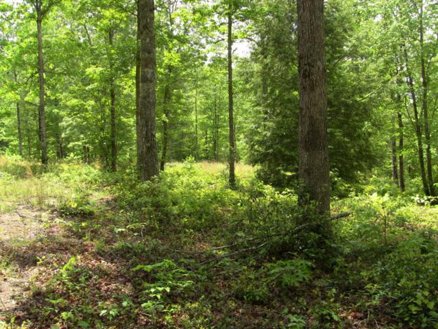 Lot 31 Chevan Lane, Oneida, TN 37841 (#1006089) :: Shannon Foster Boline Group