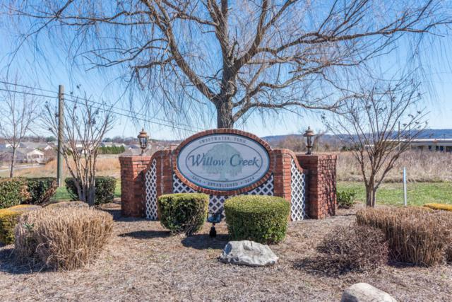 107 Willowcreek Blvd, Sweetwater, TN 37874 (#1006539) :: Billy Houston Group