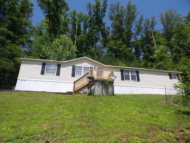 1000 Lilac Way, Cosby, TN 37722 (#1006964) :: SMOKY's Real Estate LLC