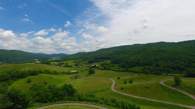 Dry Hill Rd, Butler, TN 37640 (#1007199) :: Shannon Foster Boline Group