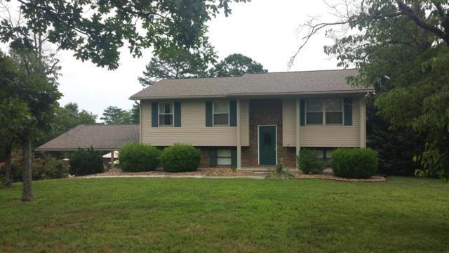 1226 Harold Patterson Rd, Dandridge, TN 37725 (#1007740) :: Realty Executives Associates