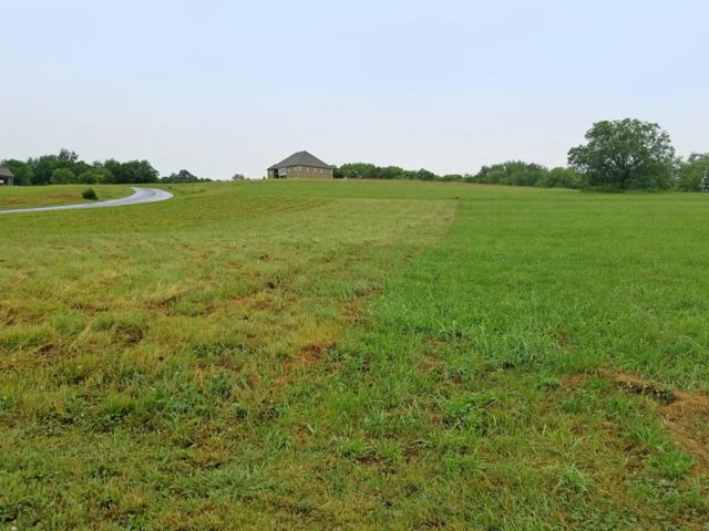 9619 Gunnies Drive, Kodak, TN 37764 (#1007995) :: SMOKY's Real Estate LLC