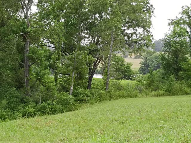 9724 Tranquility Lane, Kodak, TN 37764 (#1008007) :: SMOKY's Real Estate LLC