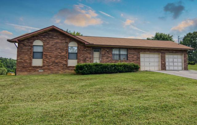 1250 Old Newport Hwy, Sevierville, TN 37862 (#1008141) :: SMOKY's Real Estate LLC