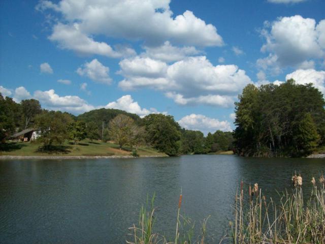 Moon Run Aka Hammontree Lane Lane, Greenback, TN 37742 (#1008193) :: SMOKY's Real Estate LLC