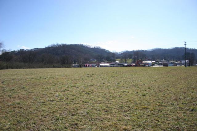 Cherohala Skyway, Tellico Plains, TN 37385 (#1009487) :: SMOKY's Real Estate LLC