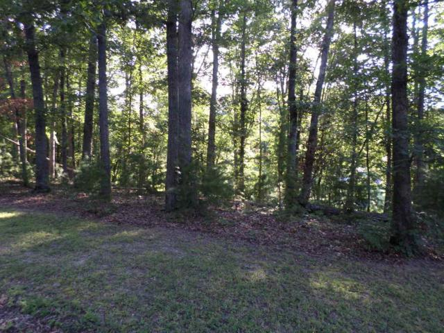 Lot 3 Cobblestone Lane, Dandridge, TN 37725 (#1009496) :: Billy Houston Group