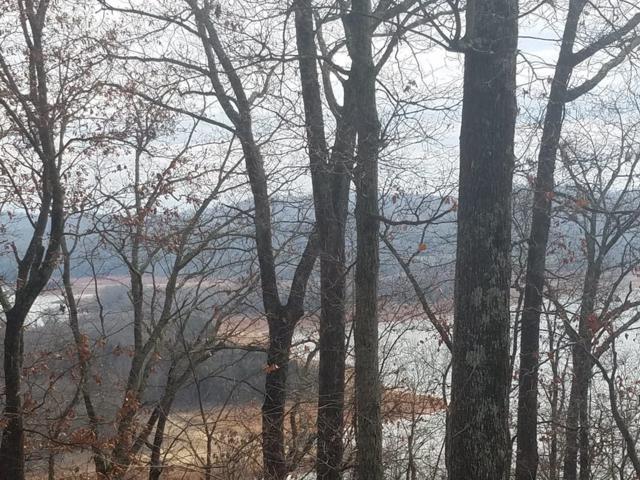 810 Wilderness Drive, Mooresburg, TN 37811 (#1009625) :: Billy Houston Group