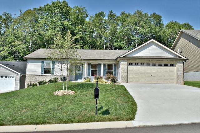 1710 Cove Oak Lane, Knoxville, TN 37909 (#1009807) :: Billy Houston Group