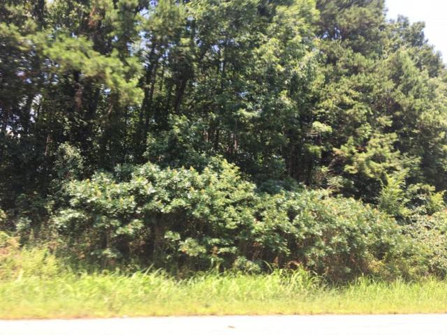 374 Walking Horse Tr, Rockwood, TN 37854 (#1009823) :: Billy Houston Group