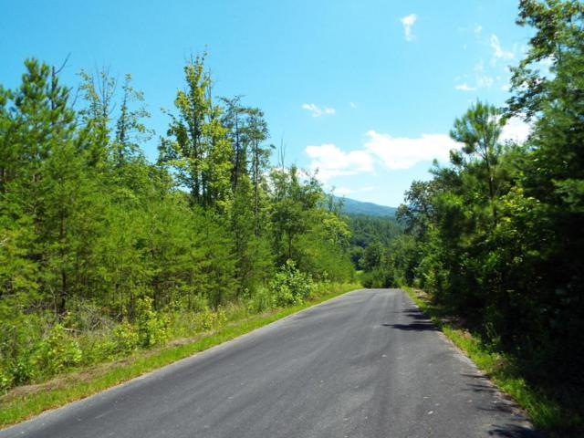 Lot 107 Huff Overlook Way, Del Rio, TN 37727 (#1009941) :: Shannon Foster Boline Group