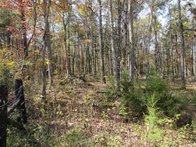 Lower Smithfield Rd, Tellico Plains, TN 37385 (#1010030) :: Billy Houston Group