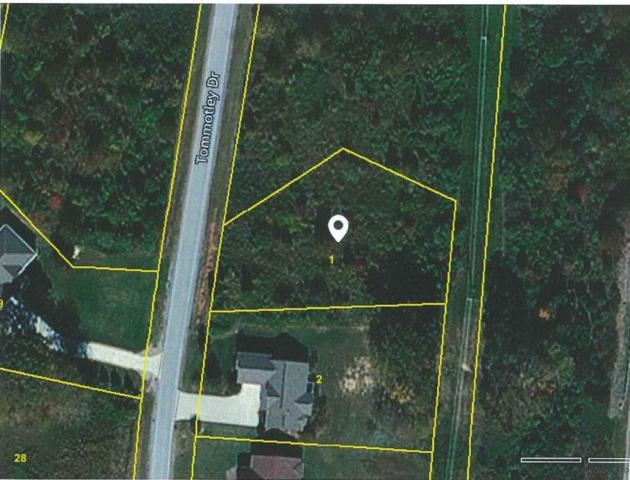 205 Tommotley Drive, Loudon, TN 37774 (#1010603) :: Billy Houston Group
