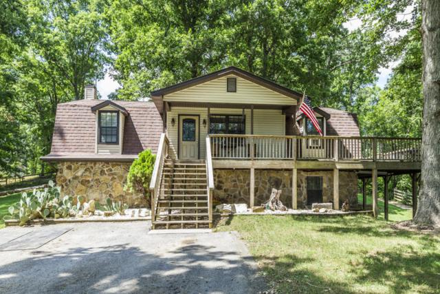 101 Old Hollow Rd, Loudon, TN 37774 (#1010828) :: Billy Houston Group