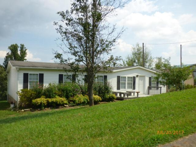 377 Elm Grove St, Loudon, TN 37774 (#1010879) :: Billy Houston Group