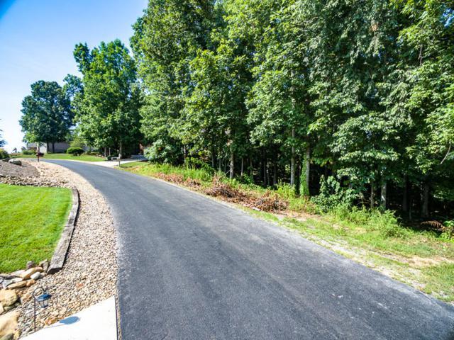 317 Washita Lane, Loudon, TN 37774 (#1010981) :: Billy Houston Group