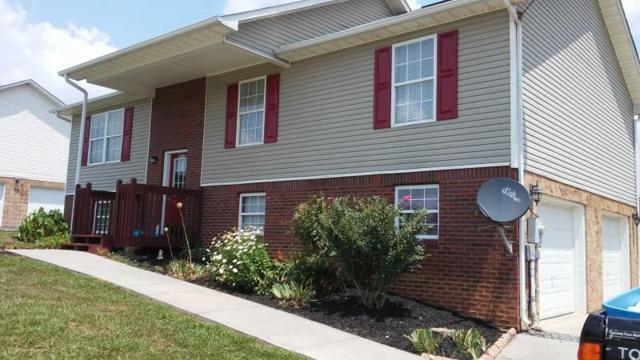4641 Primrose Circle, Maryville, TN 37804 (#1010993) :: Billy Houston Group