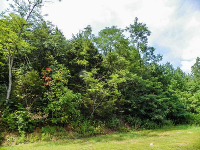 Lot#3 Seaton Springs, Sevierville, TN 37862 (#1011097) :: Billy Houston Group