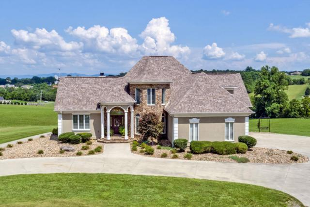 527 Mountain View Drive, Vonore, TN 37885 (#1011130) :: Billy Houston Group