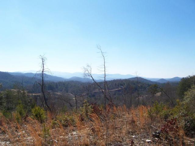 Happy Valley Rd, Tallassee, TN 37878 (#1011189) :: Billy Houston Group