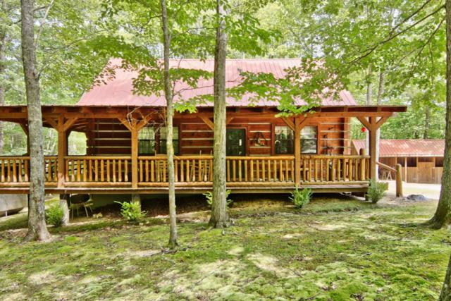 784 Wilderness Tr, Oneida, TN 37841 (#1011194) :: Billy Houston Group