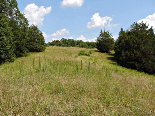 Forest Ridge Road, Dandridge, TN 37725 (#1011228) :: Billy Houston Group