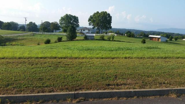 Lot 15 Tuckahoe View Trail, Kodak, TN 37764 (#1011268) :: Billy Houston Group