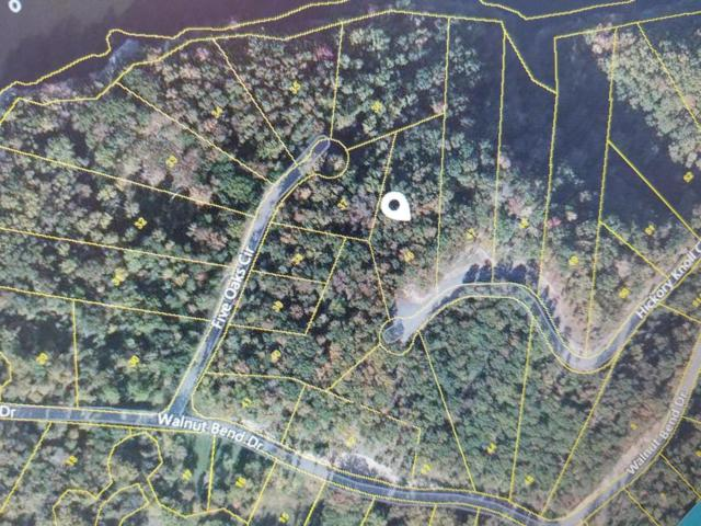 Lot 46 Hickory Knoll Circle, Whitesburg, TN 37891 (#1011869) :: Shannon Foster Boline Group