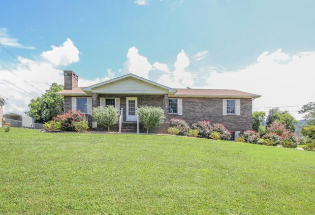 2911 Ty Drive, Louisville, TN 37777 (#1012147) :: Shannon Foster Boline Group