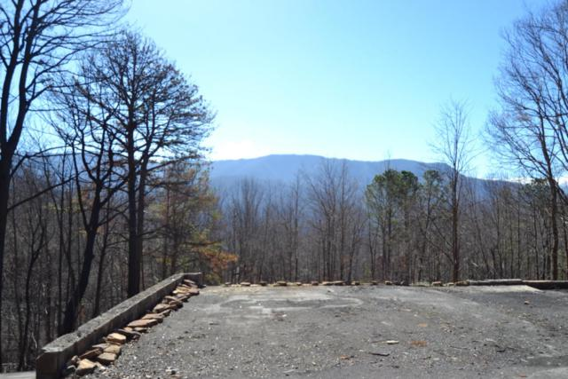705 Vixen Run, Gatlinburg, TN 37738 (#1012516) :: SMOKY's Real Estate LLC