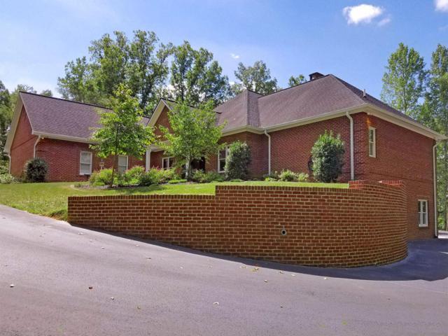 225 Owassa Drive, Newport, TN 37821 (#1012816) :: SMOKY's Real Estate LLC