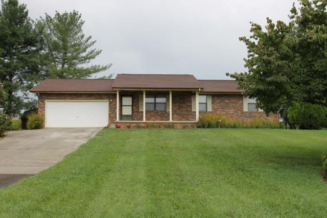 224 Goldenrod Drive, Seymour, TN 37865 (#1012948) :: Shannon Foster Boline Group