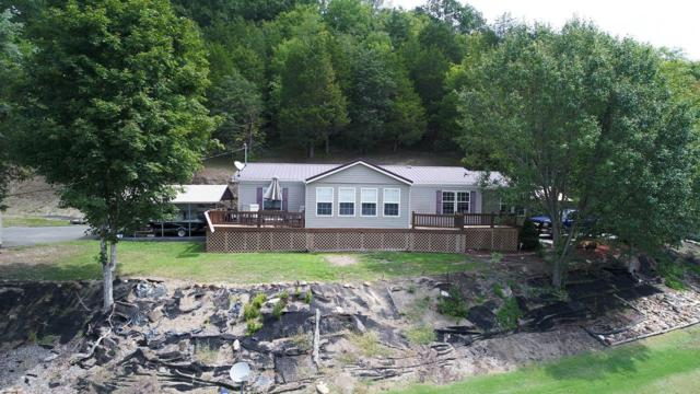 790 Brown Hollow Rd, Newport, TN 37821 (#1013074) :: SMOKY's Real Estate LLC