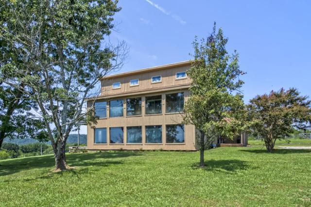 2102 Linn View Drive, Seymour, TN 37865 (#1013186) :: SMOKY's Real Estate LLC