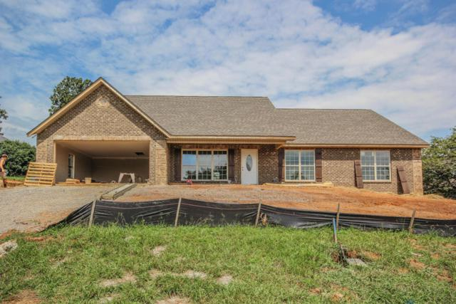 819 Royal View Drive, Maryville, TN 37801 (#1013263) :: Shannon Foster Boline Group