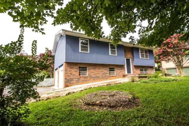307 W Mountain View Rd, Corryton, TN 37721 (#1013339) :: Shannon Foster Boline Group