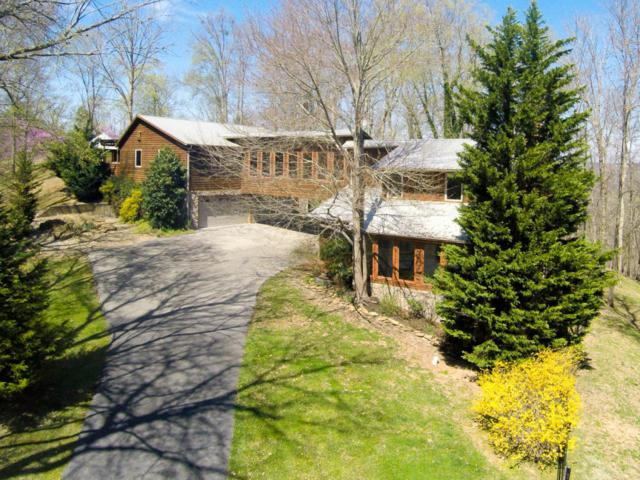 1303 Fawn Rd, Seymour, TN 37865 (#1013410) :: SMOKY's Real Estate LLC