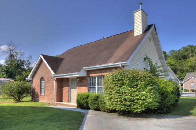 412 Dorminey Drive, Pigeon Forge, TN 37863 (#1013434) :: SMOKY's Real Estate LLC