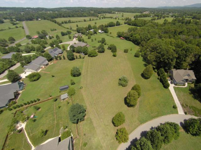 1414 Chickadee Circle, Maryville, TN 37801 (#1013452) :: Shannon Foster Boline Group