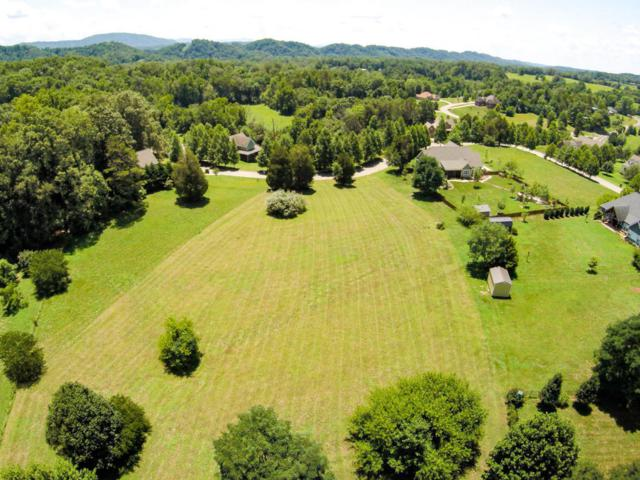 1416 Chickadee Circle, Maryville, TN 37801 (#1013459) :: Shannon Foster Boline Group