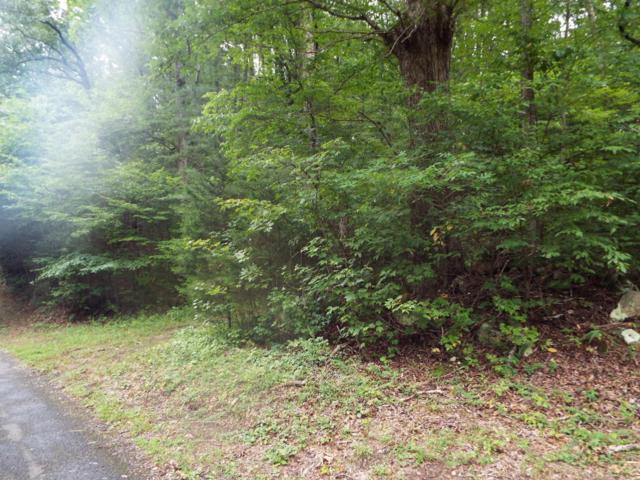 Par 003.04 Timber Lake Way, Cosby, TN 37722 (#1013550) :: SMOKY's Real Estate LLC