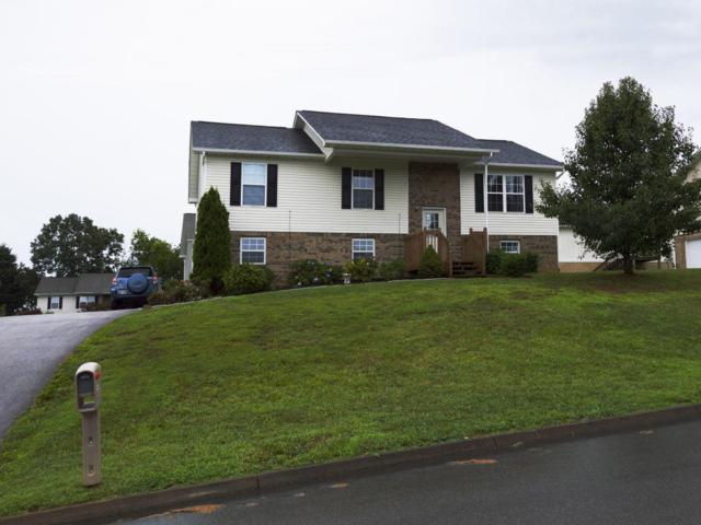 213 Tristan Lane, Dandridge, TN 37725 (#1013575) :: SMOKY's Real Estate LLC