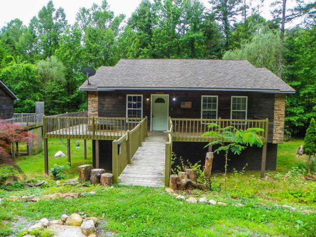 3446 &3448 Obes Way, Sevierville, TN 37876 (#1013651) :: The Terrell Team