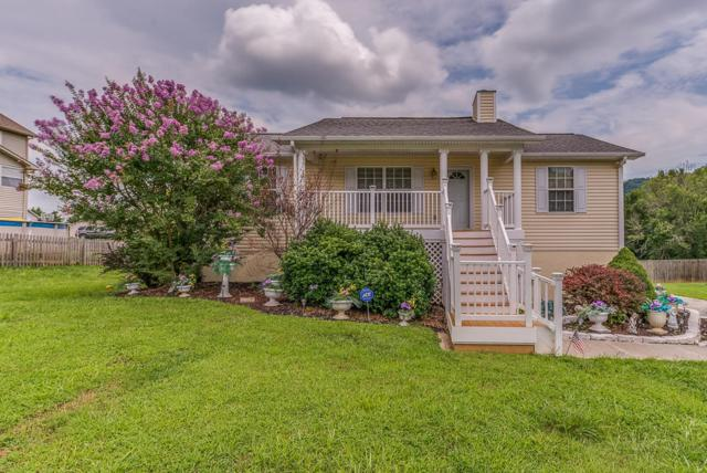 6710 Shimmering Brooks Lane, Knoxville, TN 37918 (#1013721) :: Realty Executives Associates
